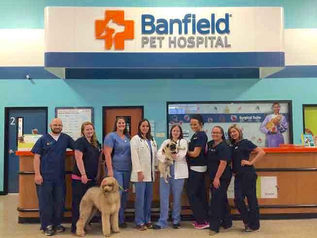 banfield hospitals survey for feedback
