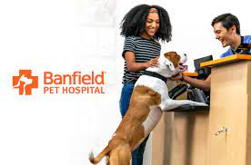 banfield pet hospitals survey for feedback